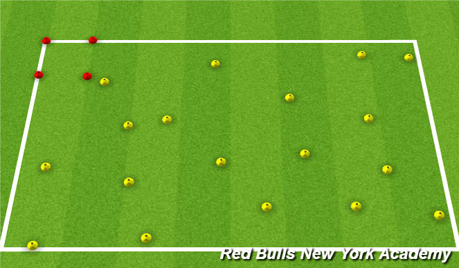 Football/Soccer Session Plan Drill (Colour): Zoo Keeper's Mess
