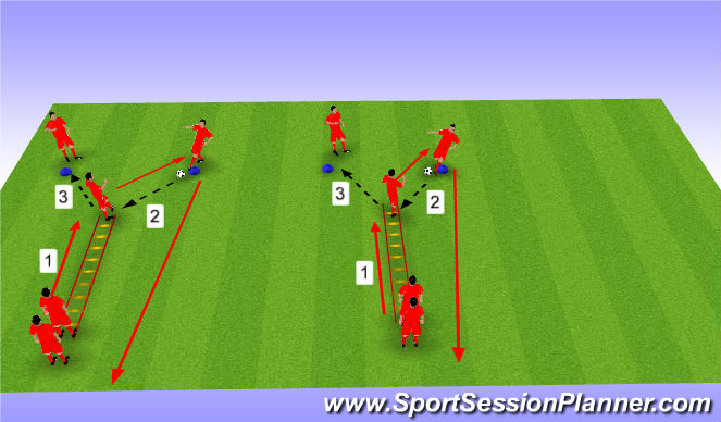 Football/Soccer Session Plan Drill (Colour): Ladder Movements