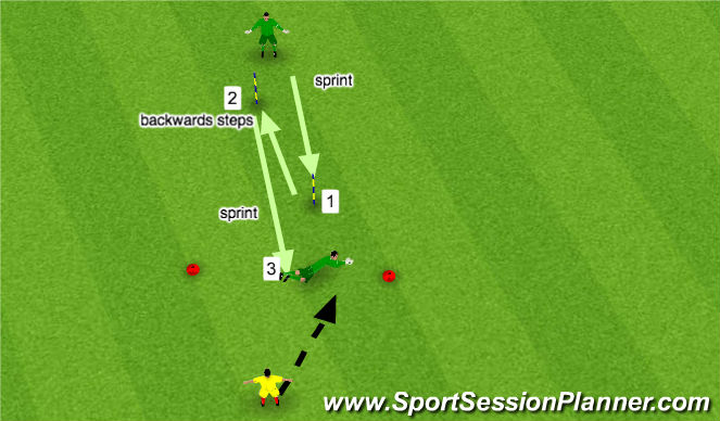 Football/Soccer Session Plan Drill (Colour): saq 1