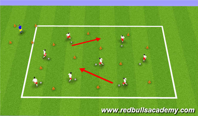 Football/Soccer Session Plan Drill (Colour): Zoo Keeper