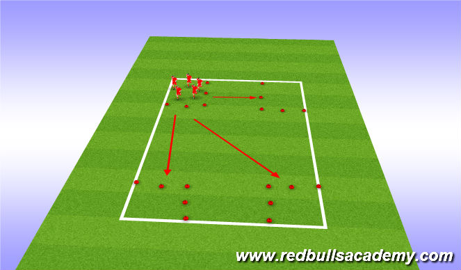 Football/Soccer Session Plan Drill (Colour): four sqaure zoo game